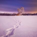 Dreamland © Mikko Lagerstedt