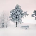 Silence © Mikko Lagerstedt