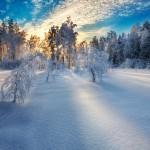 winterlight © Mikko Lagerstedt