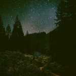 © Tundra Tales