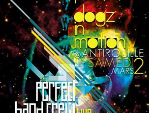 dogz2013-303x231